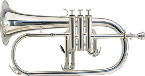 Steinbach Bb-Flügelhorn silber Optik inkl. Softetui