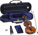 Steinbach 1/4 Geige im SET Buchsbaumgarnitur