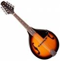 Stagg M20 S Bluegrass Mandoline mit massiver Fichtendecke